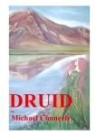 Druid Novel Cover