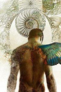 shaman journey
